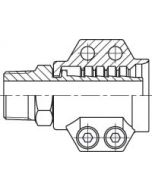 Steam fitting M incl. safety clamps